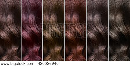 Hair Collection, Shades, Set Of Six Colors. Straight Hair.
