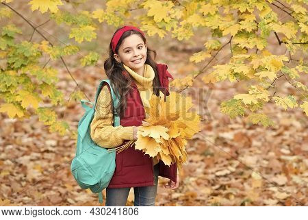 Perfect Autumn Day Of Cheerful Kid With School Bag And Maple Leaves Arrangement Walking In Fall Seas