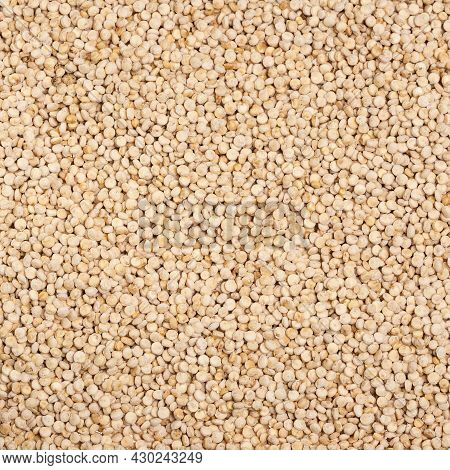 Dry Organic Quinoa Seeds - Chenopodium Quinoa