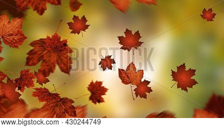 Composition of leaves falling over autumn scenery. nature, seasons, autumn and colour concept digitally generated image.