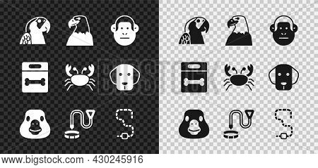 Set Macaw Parrot, Eagle Head, Monkey, Goose Bird, Collar With Name Tag, Worm, Dog Bone And Crab Icon