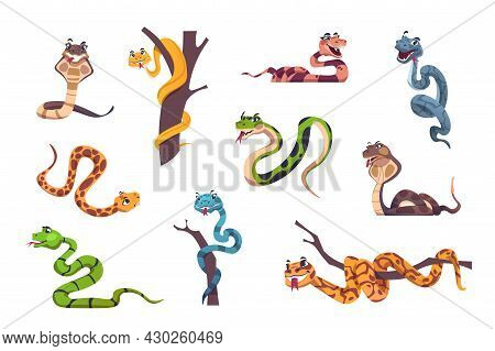 Snakes Character. Cute Animal Mascot With Funny Face Emotions For Kids Illustration. Wild Reptile Of