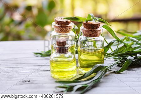 Essential Oil Of Tarragon In A Bottle. Selective Focus.