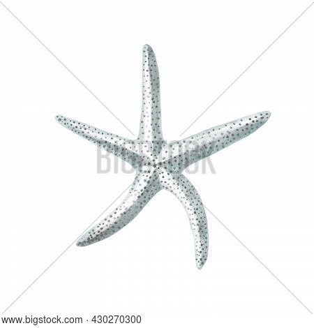 Starfish Watercolor Painting Isolated On White Background. Watercolor Illustration , Sea Animal Draw