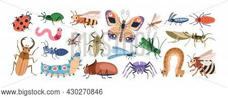 Cute Cartoon Insect Characters Set. Funny Happy Small Bugs, Butterflies, Caterpillars, Grasshoppers,