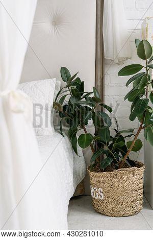 Closeup At Bedroom Natural Decoration, Nobody At Home. Comfortable White Room In Minimalistic Minima