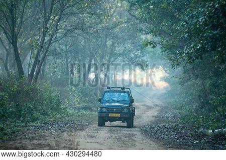 Jim Corbett National Park, Ramnagar, Uttarakhand, India - December 7, 2020 - Wildlife Safari Or Game