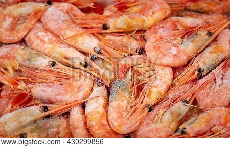 Pre-boiled And Frozen Northern Shrimp. Close-up View From Above. Background Or Texture