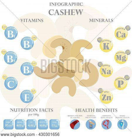 Infographic About Nutrients In Cashew. Vector Illustration Of Cashew, Vitamins, Nuts, Healthy Food,