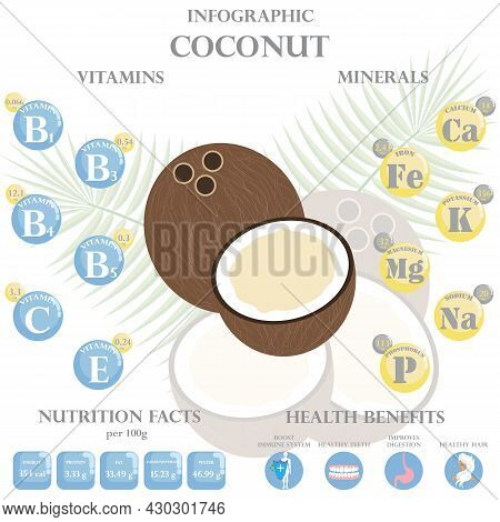 Infographic About Nutrients In Coconut. Vector Illustration Of Coconut, Vitamins, Nuts, Healthy Food