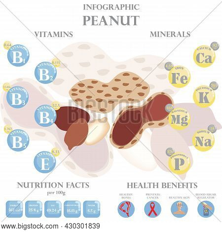 Infographic About Nutrients In Peanut. Vector Illustration Of Peanut, Vitamins, Nuts, Healthy Food,