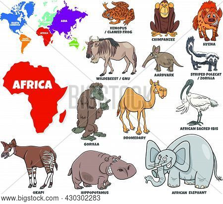 Educational Cartoon Illustration Of African Animal Species Set And World Map With Continents Shapes