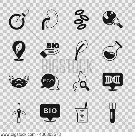 Set Test Tube And Flask, Dna Symbol, Hemoglobin, Bio Healthy Food, Location With Leaf, Petri Dish Pi
