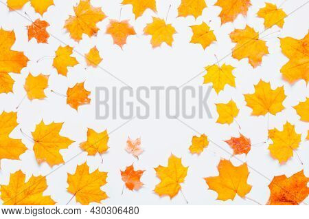 Autumn background. Seasonal autumn maple leaves on the white background. Autumn composition with free space, autumn leaves, autumn composition, autumn still life, autumn border, autumn frame, autumn concept