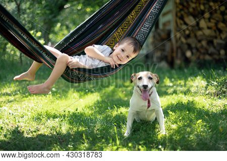 Small kid on hammock with white dog puppy breed jack russel terrier on summer backyard. Happy childhood concept