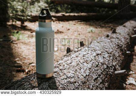 Water bottle on a trunk in a forest
