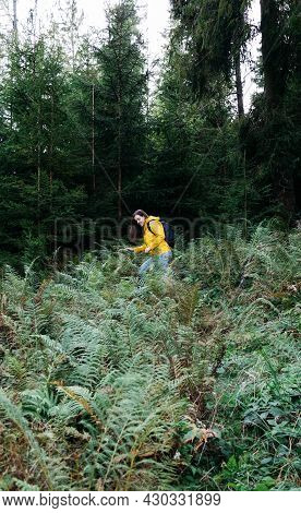 Young Woman In Yellow Raincoat With Backpack In Forest. Caucasian Female Tourist Resting Forest Walk