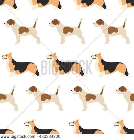 Vector Seamless Pattern With Corgi And Beagle Dogs. Vector Illustration Flat With A Domestic Cute An