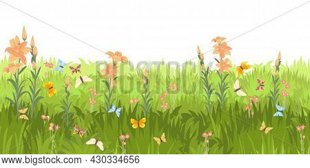 Meadow With Wildflowers And Butterflies. Seamless Illustration. Grass Close-up. Green Summer Landsca