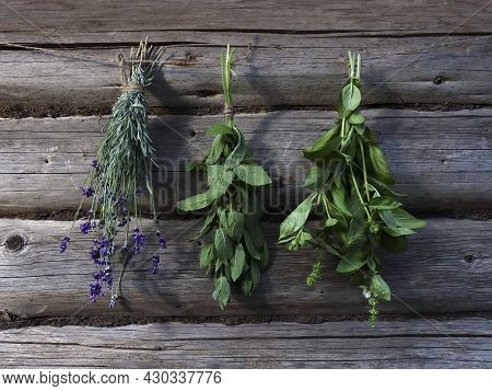 Fresh Herbs Mint, Lavender, Basil In Bunches Hang On A Drying Rope On A Wooden Rustic Background Of