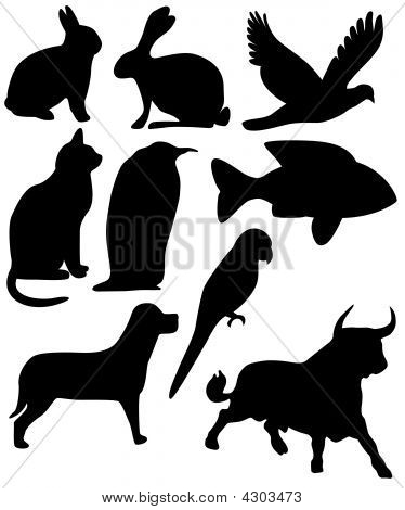 Nine Animals Black Silhouettes