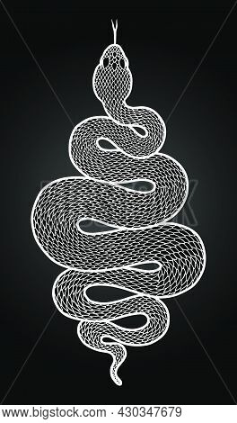 Coiled Snake Detailed Illustration. Tribal Serpent In White Isolated Over Black Background. Vector T