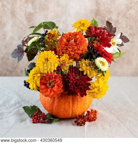 A Beautiful Autumn Bouquet Of Yellow And Red Flowers In A Pumpkin. The Concept Of Autumn, Thanksgivi
