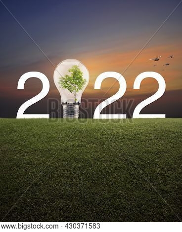 2022 White Text And Light Bulb With Tree Inside On Green Grass Field Over Sunset Sky With Birds, Hap