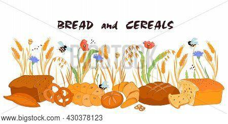 Bread And Cereals Background. Bakery Production Against Backdrop With Natural Wheat And Oat Cereals,