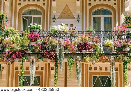 Blooming Flowers In Pots On Street In Residential Complex. Pots With Flowers Adorns Exterior Of Resi