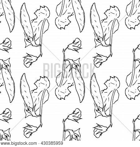 A Pattern Of A Twig With A Pea Pod And A Flower. Vector Seamless Pattern Of A Bean Or Pea Plant Draw