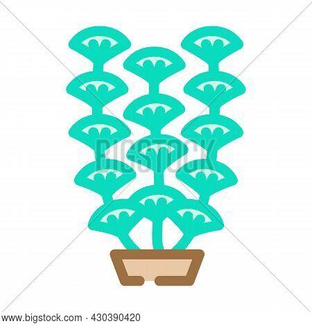 Aquarium Algae Seaweed Color Icon Vector. Aquarium Algae Seaweed Sign. Isolated Symbol Illustration