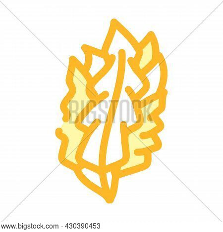 Japanese Kelp Seaweed Color Icon Vector. Japanese Kelp Seaweed Sign. Isolated Symbol Illustration