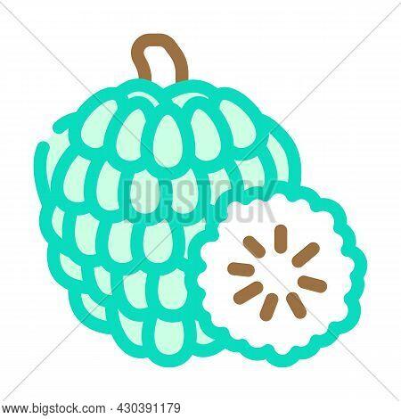 Custard Apple Fruit Color Icon Vector. Custard Apple Fruit Sign. Isolated Symbol Illustration