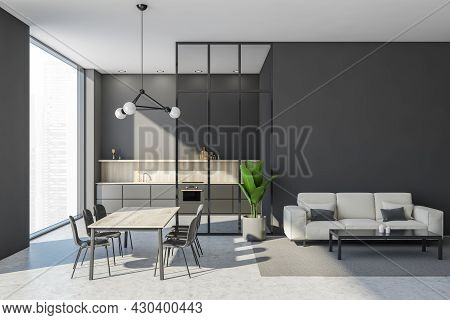 Grey Interior With The Simplified Kitchen Cabinet, Panoramic Window, Glass Partition, White Sofa Wit