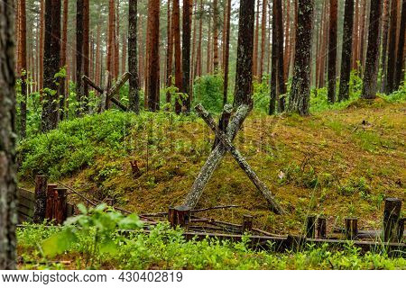 Trenches In Forest In The Christmas Battles Place At Latvia, Europe. Replica Of Battlefield With Dit