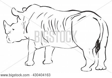 Rhino Sketch Hand Drawing Isolated On White Background. Line Vector Illustration