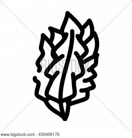 Japanese Kelp Seaweed Line Icon Vector. Japanese Kelp Seaweed Sign. Isolated Contour Symbol Black Il