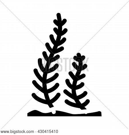 Caulerpa Taxifolia Seaweed Glyph Icon Vector. Caulerpa Taxifolia Seaweed Sign. Isolated Contour Symb