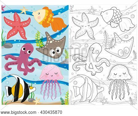 Vector Coloring Book Marine Life. Coloring Page Sea Life. Underwater World With Fish, Algae, Squid,