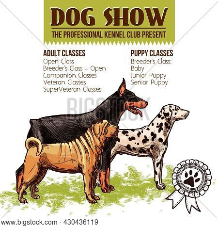 Dogs Show With Sketch Doberman Dalmatian And Shar-pei Profiles Vector Illustration