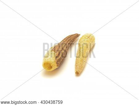 Homemade Peeled And Unpeeled Luffa Sponges Isolated On White