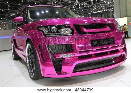 Hamman Range Rover Mystere