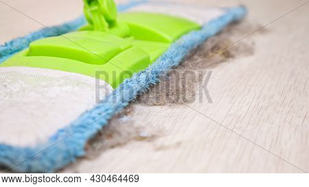 Contemporary Colorful Soft Mop And Shreds Of Fur, Dust And Wool On Wooden Floor In Light Room During