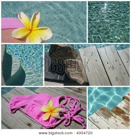 Swimming Pool Montage