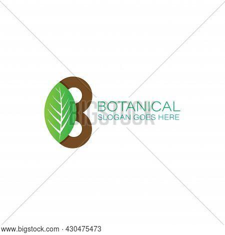 B Botani Design Logo Vector. B Lettter Design Logo Botani