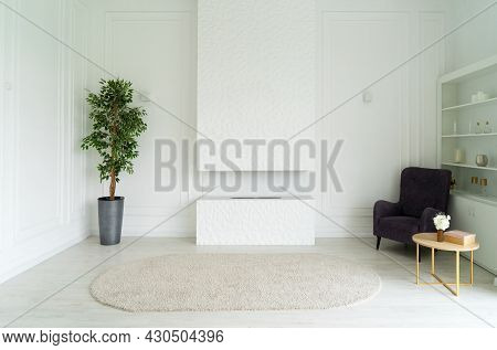 Stylish Living Room Interior Of Modern Apartment And Trendy Furniture, Plants, Fireplace And Elegant