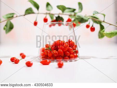 Fresh Goji Berries In Transparent Glass. Healthy Antiage Superfood.
