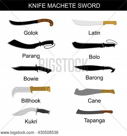 Knife Machete Sword. Infographics. Knife Machetes Set. Collection Of Knives For Various Purposes. Na