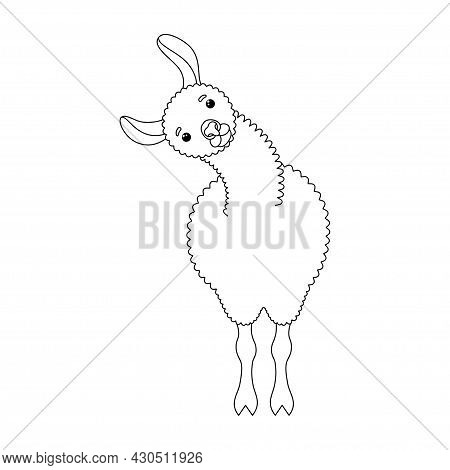 Cute Doodle Lama. Design Element For Textile, Poster, Banner, Flyer, Prints For Clothes. Vector Illu